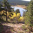 Lily Lake Ridge Trail